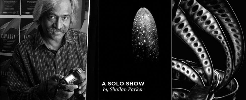 Shailan Parker's Exhibition on Mojarto