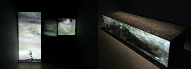 'Not Anonymous-Waking To The Fear Of A New Dawn' (left) and 'Bound' projected on burnt wood (right)