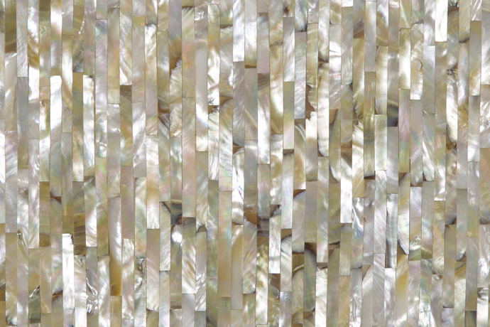 Mother of Pearl Wall Decor By Carved Additions