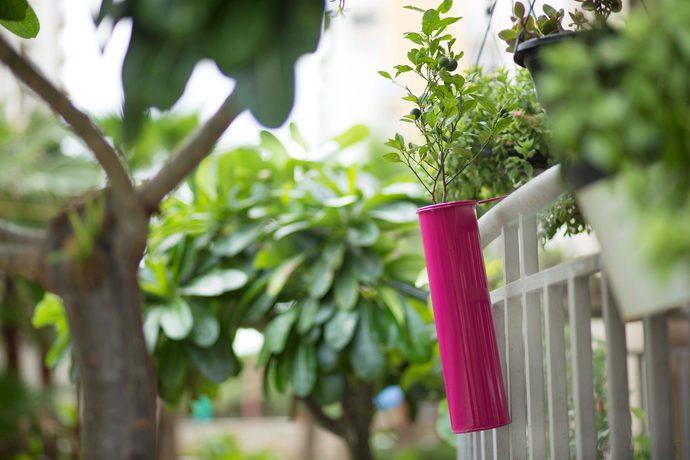 PoppadumArt Hang on! Balcony Planter - Hot Pink Garden Decor By PoppadumArt