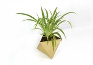 Octahedron Brass Planter - Small Decorative Vase By Deniable Studio