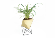 Octahedron Brass Planter - Medium Decorative Vase By Deniable Studio