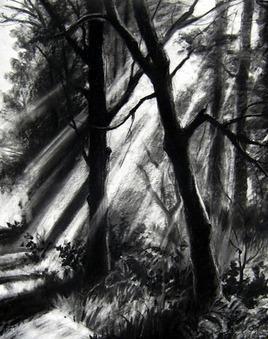 Morning light by Sumantra Mukherjee, , , Gray color
