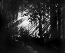 Sudden Light by Sumantra Mukherjee, , , Gray color