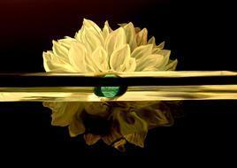 Crush by Sumitava Maity, , , Black color