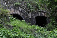 Under The Bridge - 2 by Surinder Dhami, Image, Image Photography, Digital Print on Paper, Green color