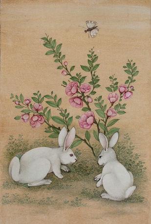 Rabbit 2 Digital Print by Mahaveer Swami,Realism