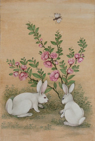 Rabbit 2 by Mahaveer Swami, Realism Painting, Watercolor Wash on Silk, Beige color
