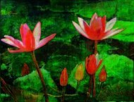 Water Lilly by Atin Mitra, Impressionism Painting, Mixed Media on Board, Green color