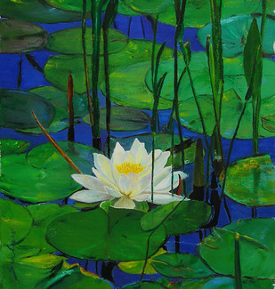 Water Lily 1 by Sulakshana Dharmadhikari, , , Green color
