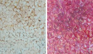 These are not Petals by Abhijit Halder, Decorative Painting, Acrylic on Canvas, Pink color
