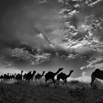 Rush Hour by Asis Kumar Sanyal, Photography, Digital Print on Paper, Gray color