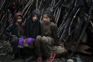 Three Friends - Photograph by Jayati Saha