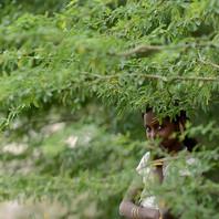 Hide & Seek by Jayati Saha, Image Photography, Digital Print on Paper, Green color
