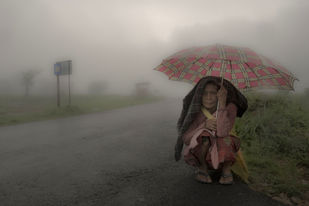 Monsoon Avenue by Sugato Mukherjee, Image Photography, Digital Print on Canvas, Gray color