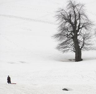 Snow - Photograph by Sugato Mukherjee