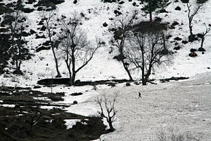 On the way to Sonmarg, Kashmir by Asis Kumar Sanyal, Photography, Digital Print on Paper, Gray color