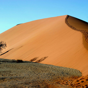 Star Dune by Tazim Jaffer, Image Photography, Digital Print on Paper, Brown color