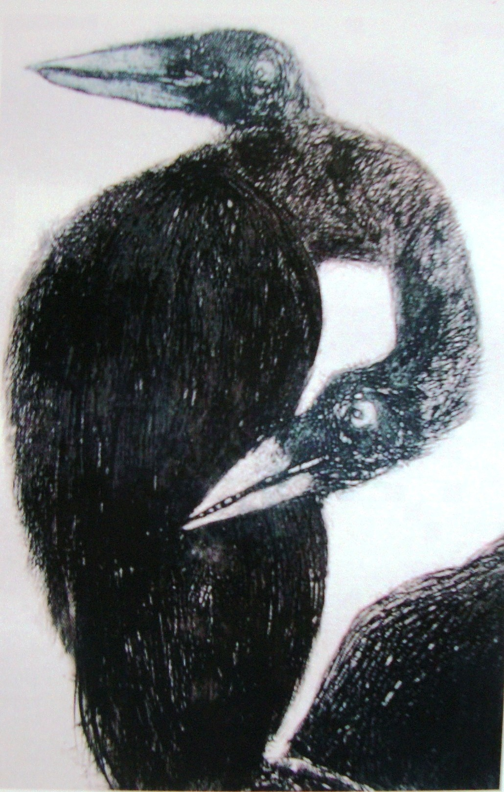 Aves by Shuvaprasanna B, Printmaking, Etching on Paper, Gray color