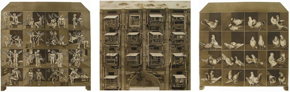 Pigeon Home by Mangesh Kapse, Conceptual Printmaking, Etching on Paper, Brown color