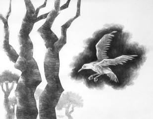 Untitled by Tapan Ghosh, Illustration Drawing, Pencil on Paper, Gray color