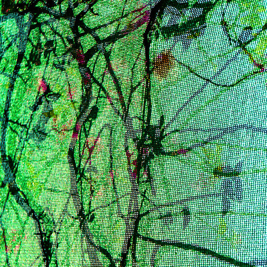 Abstract-03 by CR Shelare, Image Photograph, Digital Print on Canvas, Green color