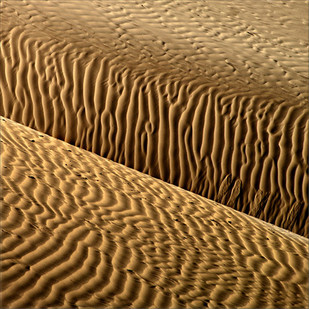 Sandscape 01 by CR Shelare, Image Photograph, Digital Print on Canvas, Brown color