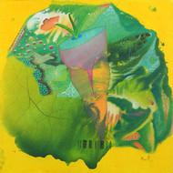 Veg Face 2 by Babu Xavier, Conceptual Painting, Acrylic on Canvas, Green color