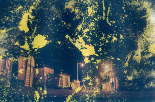 Nocturne 5 by Anirban Datta, Image Photograph, Digital Print on Paper, Green color
