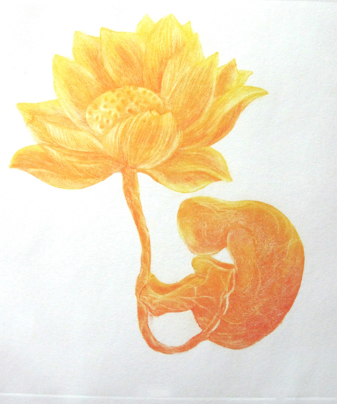 I am the Flower by Kavita Nayar , Conceptual Printmaking, Etching on Paper, Beige color