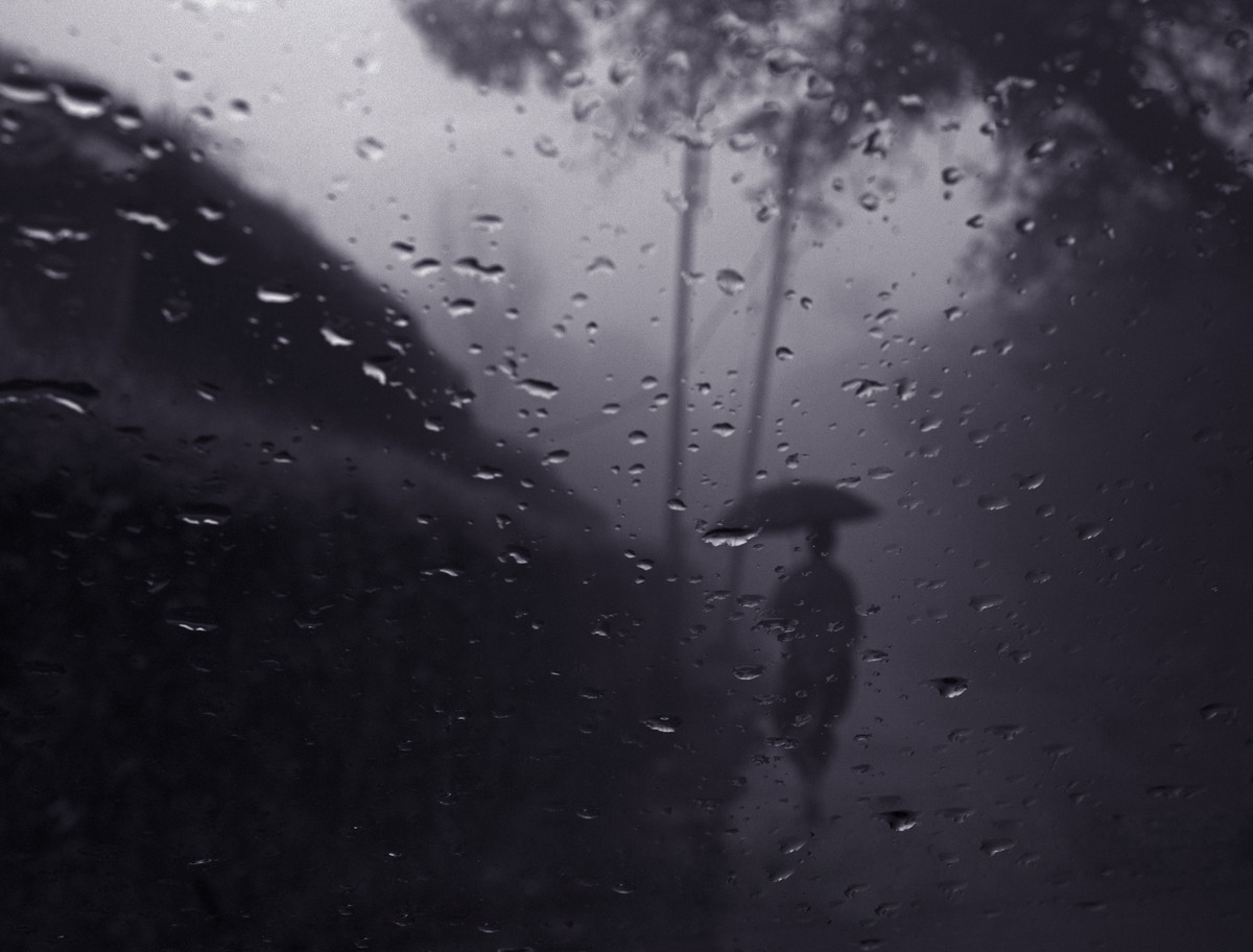 A Walk In The Rain by Dominic Lazarus, Image Photography, Digital Print on Paper, Gray color