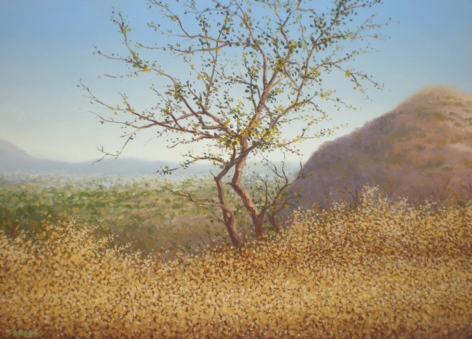 Tree by Fareed Ahmed, Impressionism , Oil on Canvas, Brown color