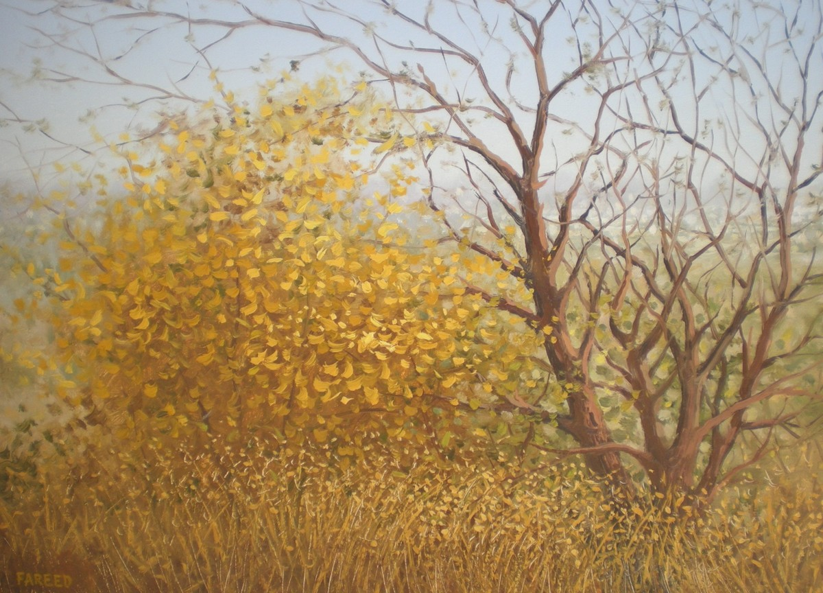 Autumn by Fareed Ahmed, Impressionism , Oil on Canvas, Brown color