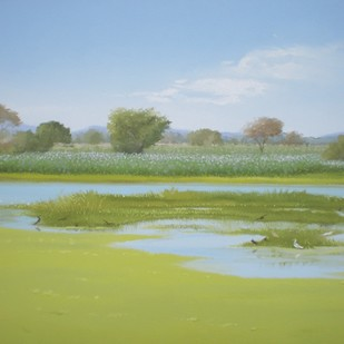Bird Sanctuary 2 by Fareed Ahmed, Impressionism , Oil on Canvas, Beige color