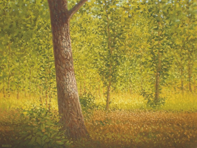 Trunk by Fareed Ahmed, Impressionism , Oil on Canvas, Green color