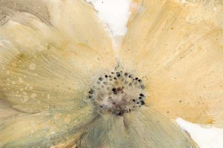 Floral Spirit IV Digital Print by O'Toole, Tim,Impressionism