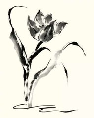 Studies in Ink - Tulip Digital Print by Rae, Nan,Illustration