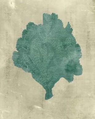 Coral in Teal Digital Print by Vision Studio,Decorative