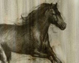 Dynamic Stallion I Digital Print by Harper, Ethan,Decorative