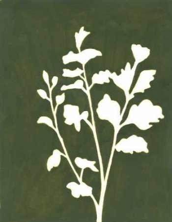 Four Seasons Foliage II Digital Print by Meagher, Megan,Decorative