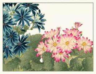 Japanese Flower Garden IV Digital Print by Konan, Tanigami,Impressionism