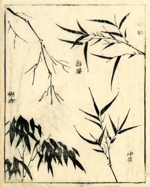 Bamboo Woodblock I Digital Print by Vision Studio,Decorative