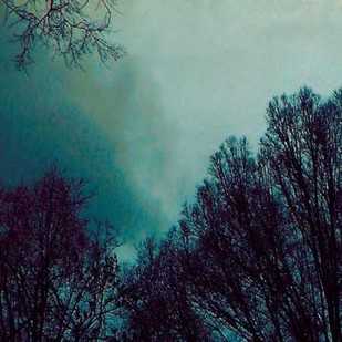 Nocturne I Digital Print by Ludwig, Alicia,Impressionism