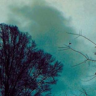 Nocturne II Digital Print by Ludwig, Alicia,Impressionism