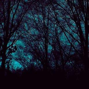 Nocturne III Digital Print by Ludwig, Alicia,Impressionism