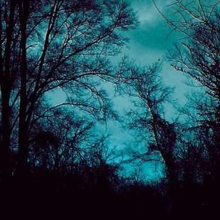 Nocturne IV Digital Print by Ludwig, Alicia,Impressionism