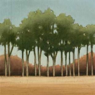 Stand of Trees II Digital Print by Harper, Ethan,Impressionism