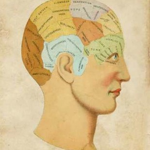Vintage Phrenology Digital Print by Vision Studio,Illustration