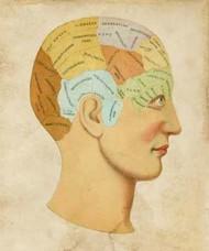 Vintage Phrenology Digital Print by Vision Studio,Illustration