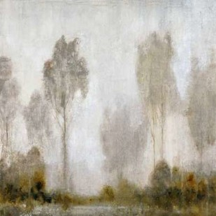 Misty Marsh I Digital Print by O'Toole, Tim,Impressionism